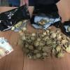 Bulbi di papavero da oppio essiccati nascosti in una busta: cittadino indiano in manette